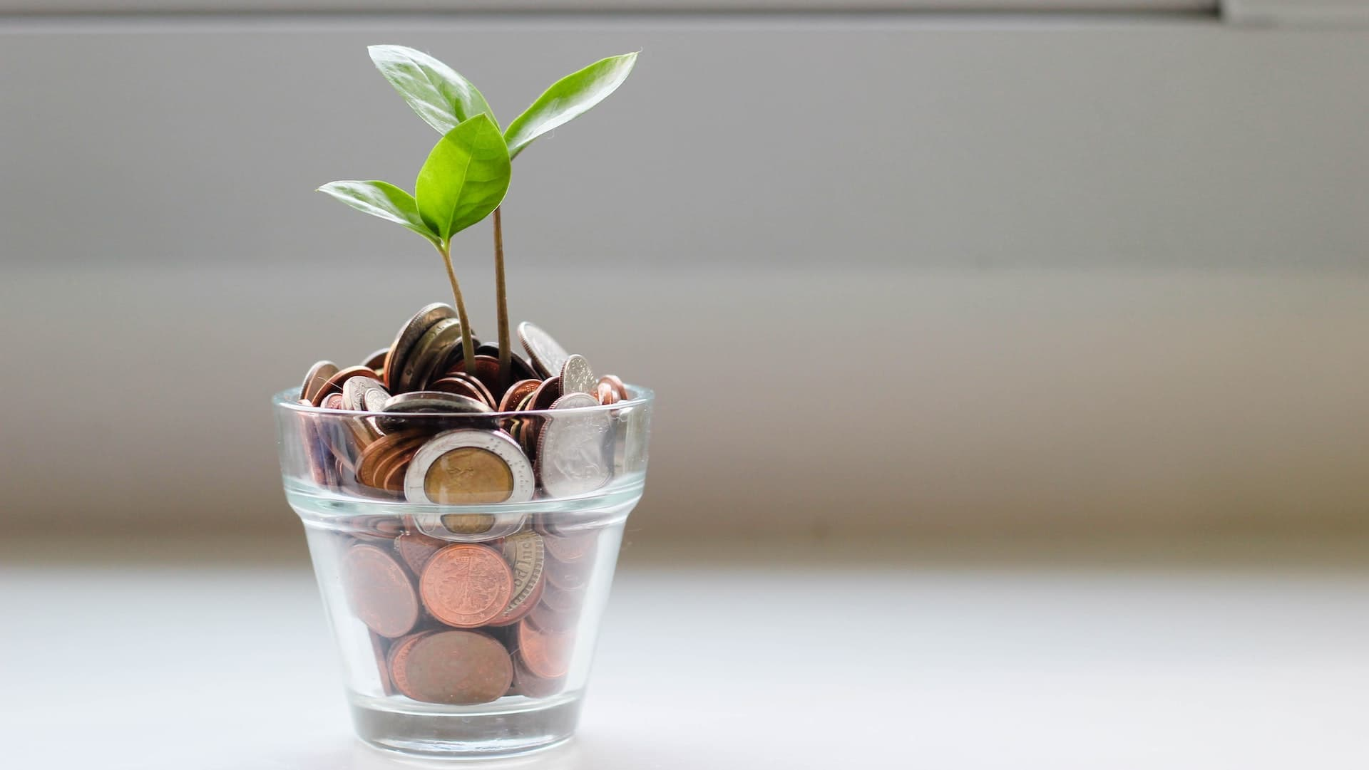 5 Tips On How To Get Started Investing With Very Little Money 8